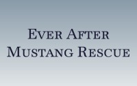Ever After Mustang Rescue