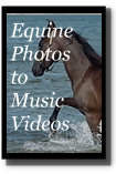 Horse photos set to video