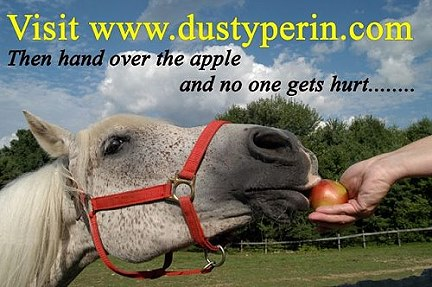 Horse eating an apple